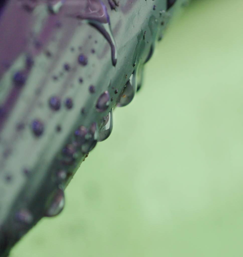 julia-ruijter-fotografie-kunstfotografie.jpg